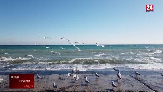 Курорт и запреты. В Крыму вводят новые правила для улучшения курортной сферы