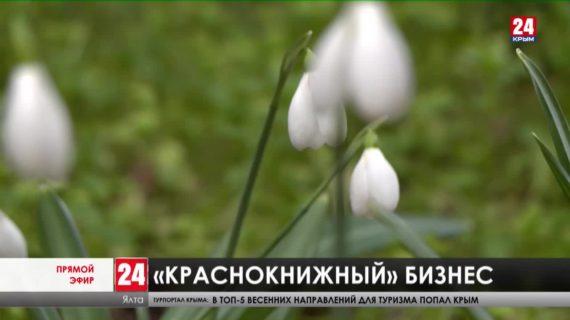 В Ялте начали продавать подснежники. Как накажут браконьеров за растение из Красной книги?