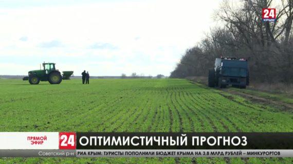 Стоит ли крымским аграриям в этом году рассчитывать на хороший  урожай?