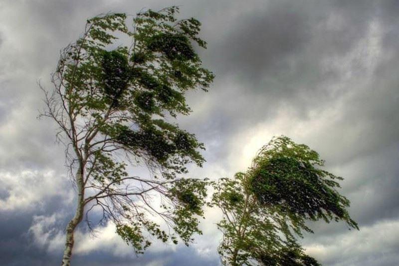 Сильный ветер: В Крыму объявили штормовое предупреждение