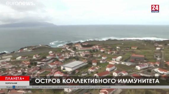 #Планета+. Коротко: Смерть у светофора в ФРГ, португальский безвирусный остров, в Китае зацвели вишни