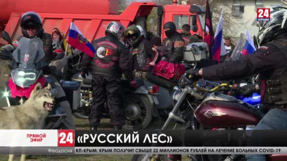 «Русский лес» в «Крымскую весну». Как отметили семилетие референдума в Феодосии?