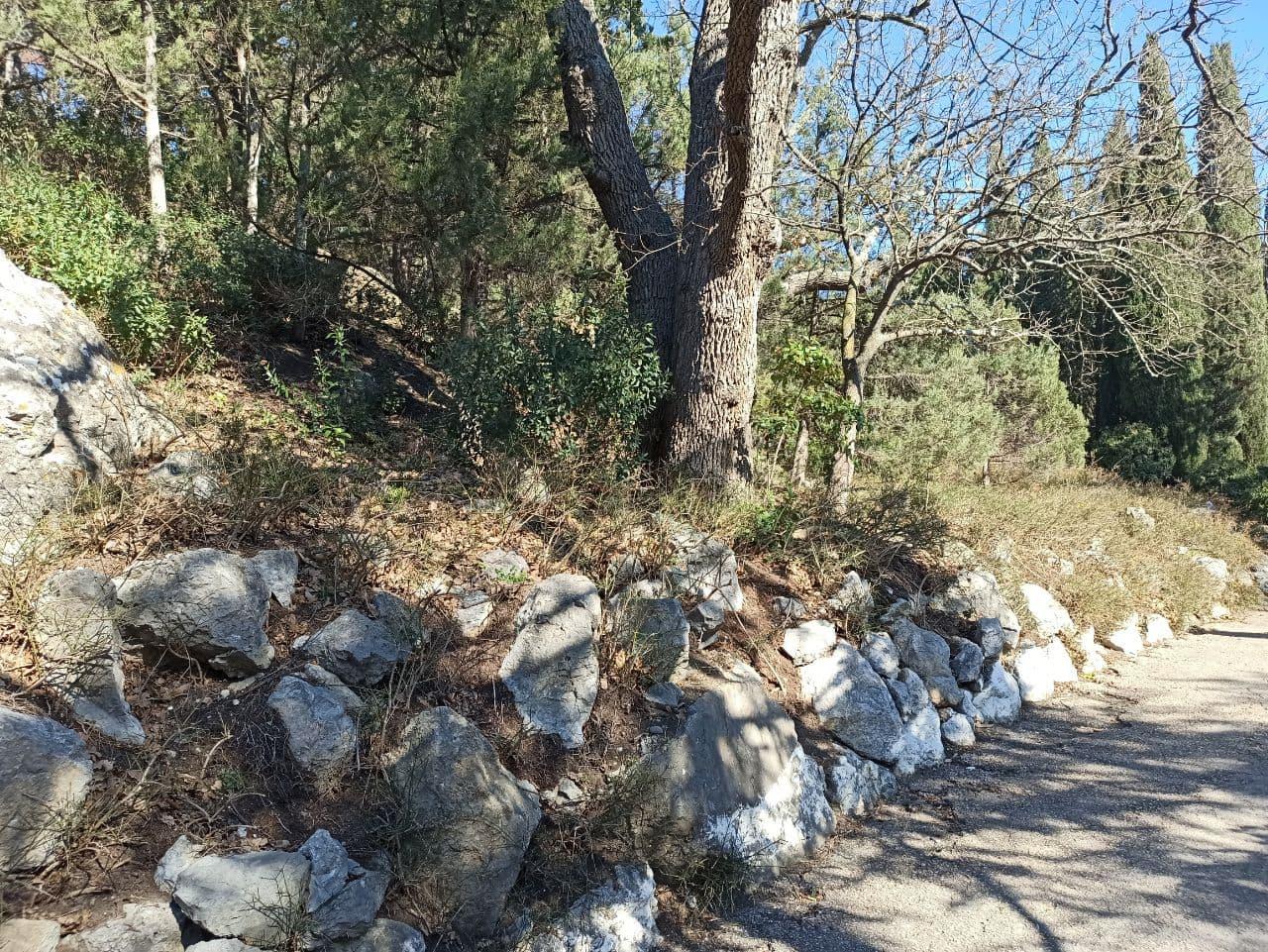 Комиссия Совмина Крыма дала неудовлетворительную оценку уборке застройщиком Форосского парка