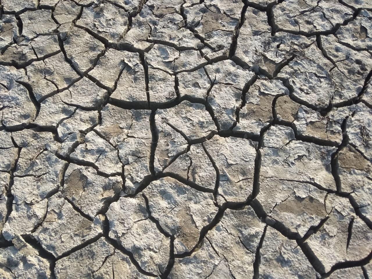 Климат в Крыму будет становиться более засушливым - Гидрометцентр