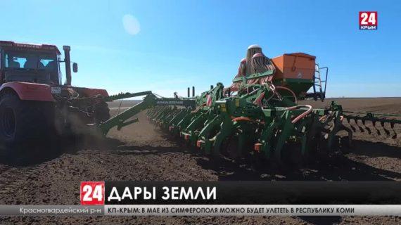 Весенняя посевная кампания началась в Крыму