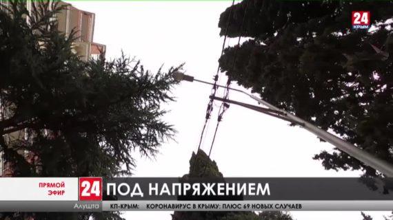 Узлы из проводов и ветви деревьев. Решают ли в Алуште проблемы с линиями электропередачи?