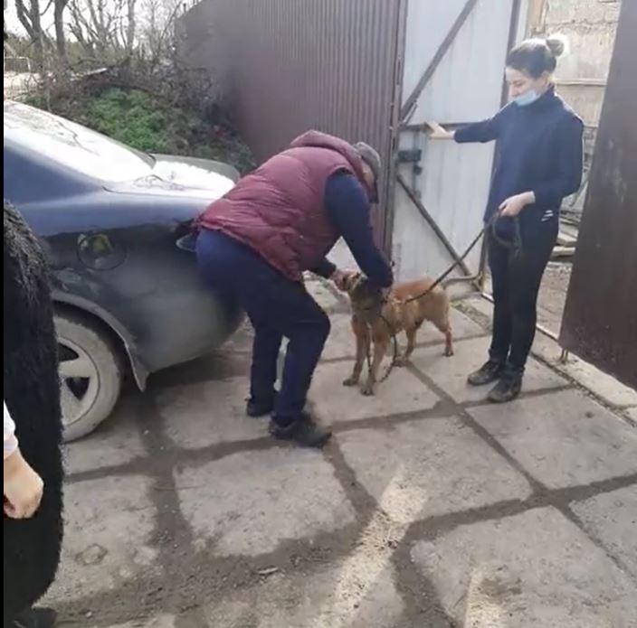 «Обещал больше не теряться»: В Евпатории хозяева нашли в приюте своего пса