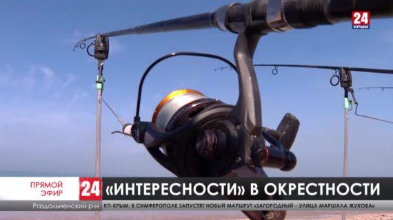 Куда отправиться за впечатлениями на Севере Крыма?