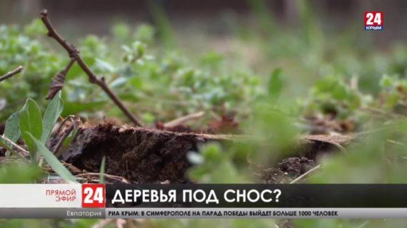 Новости Евпатории. Выпуск от 06.04.21