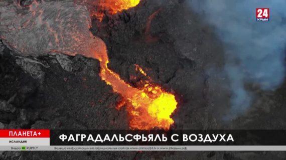 #Планета+. Коротко: Пожар на немецкой свиноферме, исландское лавовое шоу, пасха в Лондонском зоопарке