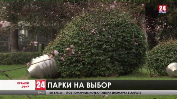 На Южном берегу Крыма – большое обновление парков и скверов. Какие территории на очереди?