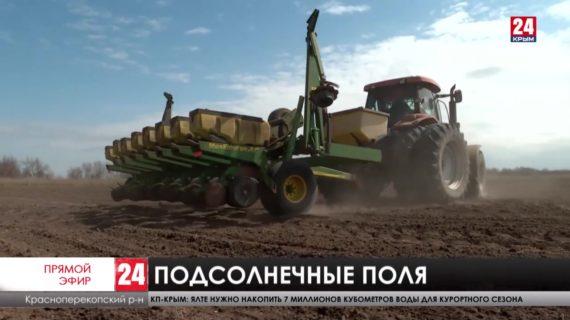 Новости северного Крыма. Выпуск от 19.04.21