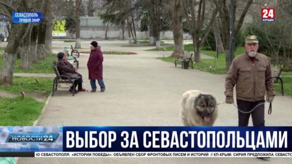 Севастопольцы голосуют за новые общественные пространства
