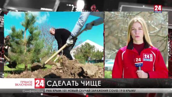 В Крыму полным ходом идёт Общероссийский субботник