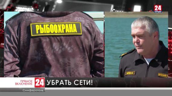 В Крыму проходит акция «Всероссийский день без сетей»