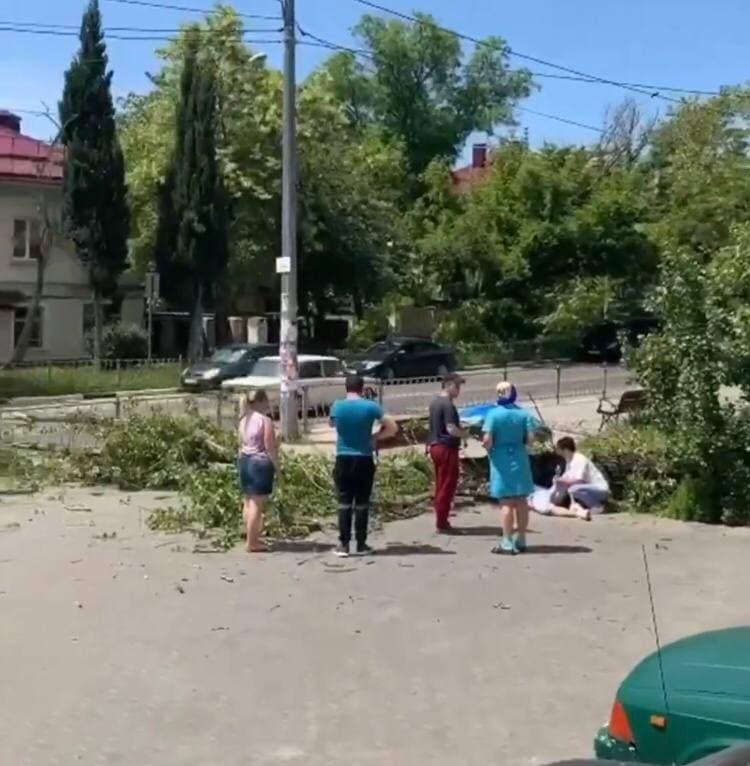В Севастополе на человека упал тополь. Видео