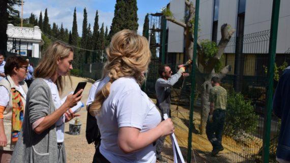 Застройщик в Форосском парке не до конца убрал забор на территории