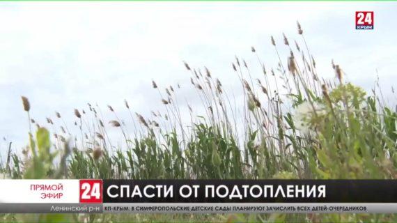 На дамбу в Приозёрном Ленинского района выделят 400 млн рублей