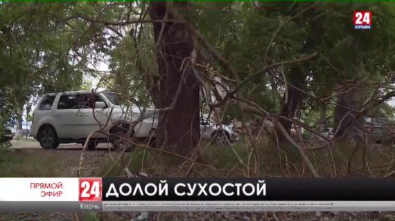 Аварийные деревья убирают в Керчи