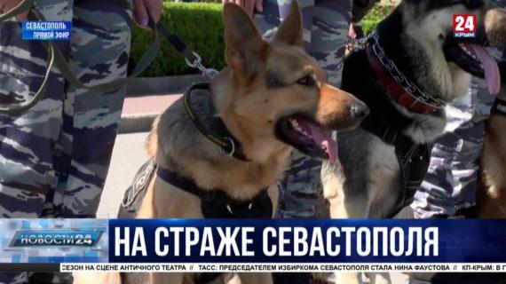 Как полиция Севастополя подготовилась к летнему сезону