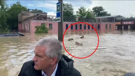 Просто переплывали улицу: Стало известно, куда направлялись пловцы МЧС из Керчи
