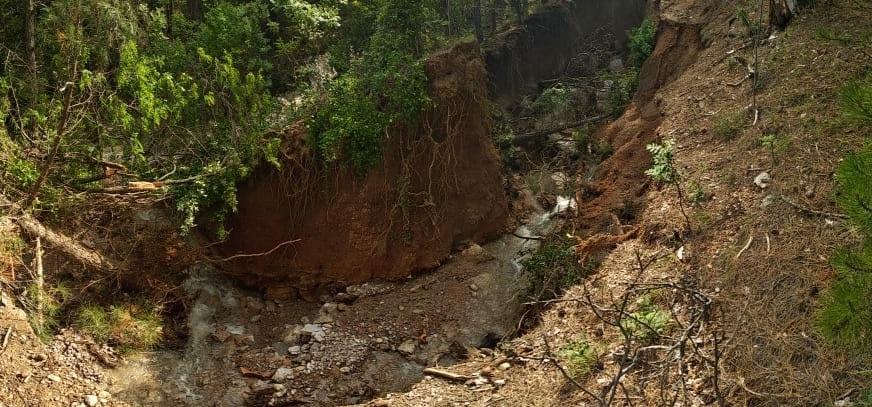 В Ялтинском горнолесном заповеднике закрыли туристические тропы из-за сильных ливней