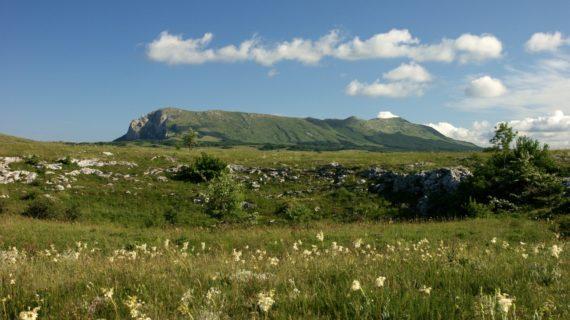 В Крыму турист сорвался с плато горы Чатыр-Даг