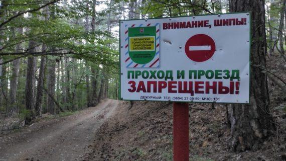 В Крыму продлили запрет на посещение лесов