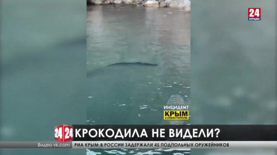 Крокодилы в Чёрном море. Правда или очередной фейк?