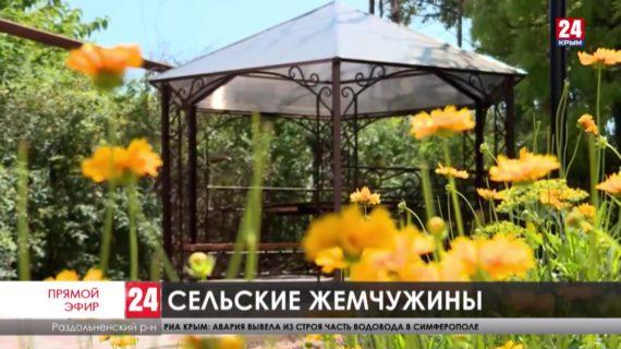 Новости северного Крыма. Выпуск от 27.07.21