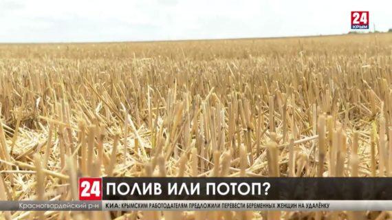 Уборочную кампанию в Крыму пришлось остановить из-за буйства стихии. Подтопило около 18 тысяч гектаров сельхозугодий