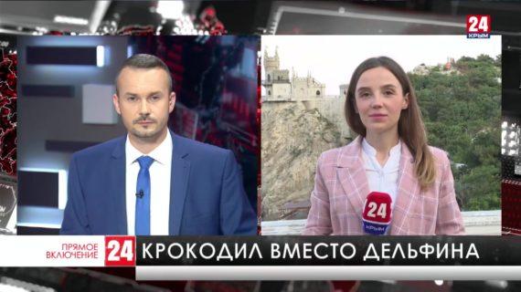 Видео с крокодилом в Чёрном море оказалось фейком