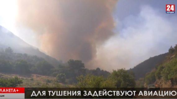 #Планета +: В Греции горят леса, авария в центре Нью-Йорка, нидерландский репортёр умер в больнице от ран