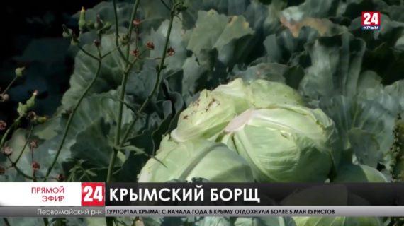 Новости северного Крыма. Выпуск от 03.08.21