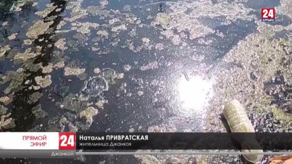 Когда в Джанкое завершат капитальный ремонт набережной реки Степная?