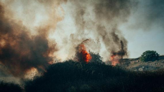 В Севастополе за сутки сгорело порядка 6 гектаров сухой травы