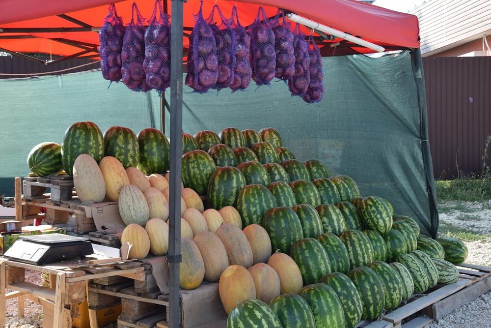 На нелегальных продавцов арбузов в Симферополе составили 20 протоколов