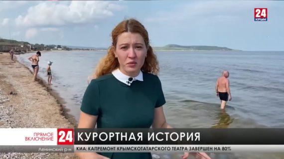 Жители села Курортное в Ленинском районе жалуются на едкий запах, который идет с моря