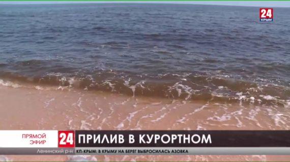 Что случилось с Азовским морем в посёлке Курортное?