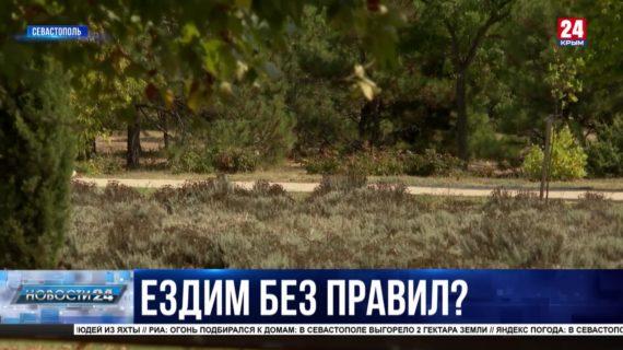 В Севастополе разработают правила движения для электросамокатов: участились случаи наездов на людей