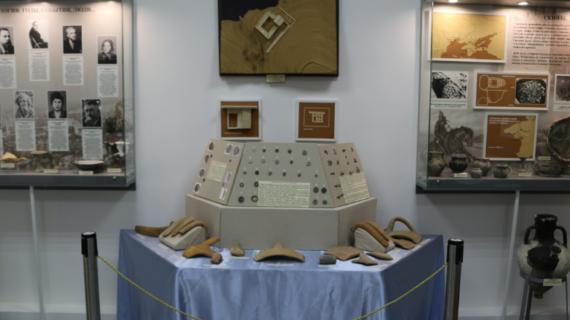 Выставка «Подводные сокровища Судака» открылась в музее-заповеднике «Калос Лимен»