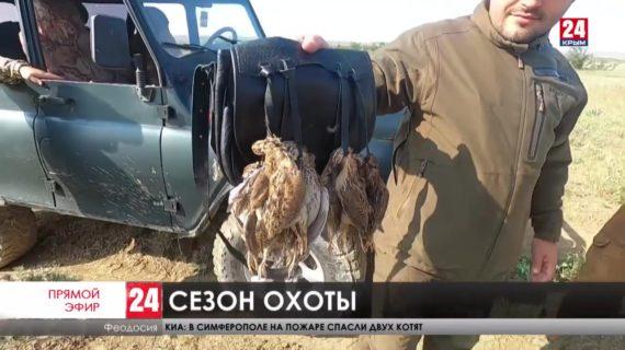 Новости восточного Крыма. Выпуск от 23.08.21