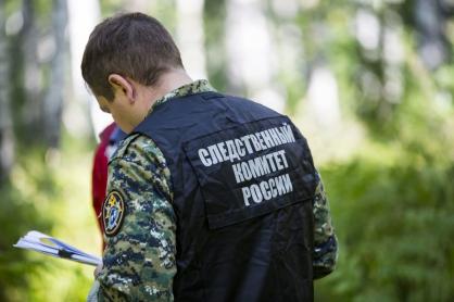 СК возбудил уголовное дело по факту травмирования ребёнка в «Тайгане»