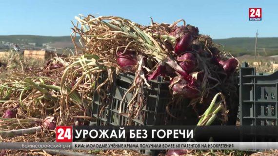 «Ялтинский лук» представят на национальном конкурсе «Вкусы России»