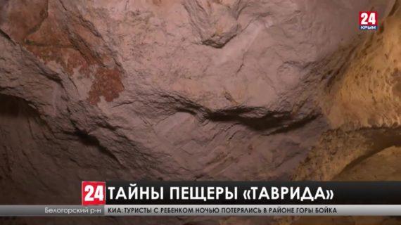 Останки древних животных обнаружили в пещере «Таврида»