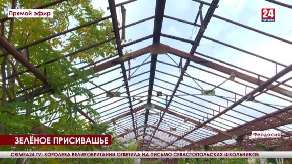 Будет лес стоять стеной. В Кировском районе высадят 47 гектаров новых деревьев