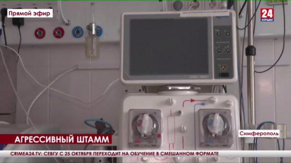 Новости Керчи. Выпуск от 14.10.21