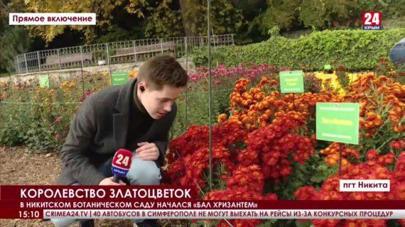 Новости 24. Выпуск 15:00 27.10.21