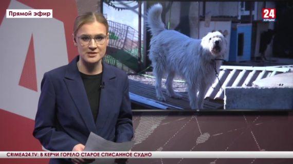 Новости Евпатории. Выпуск от 20.10.21