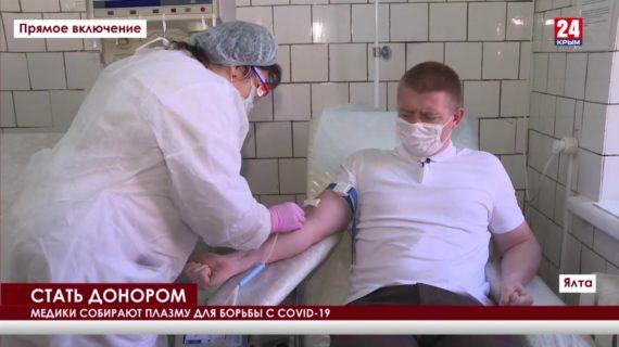 В Ялте до конца года планируют собрать две тонны донорской крови